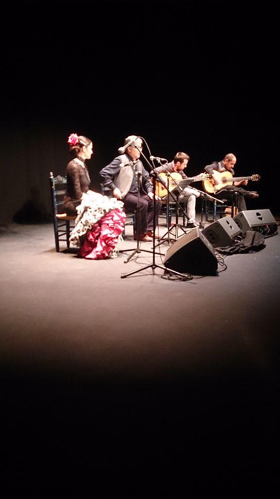 Las disciplinas del flamenco son como indica la foto. Cante, toque y baile.
