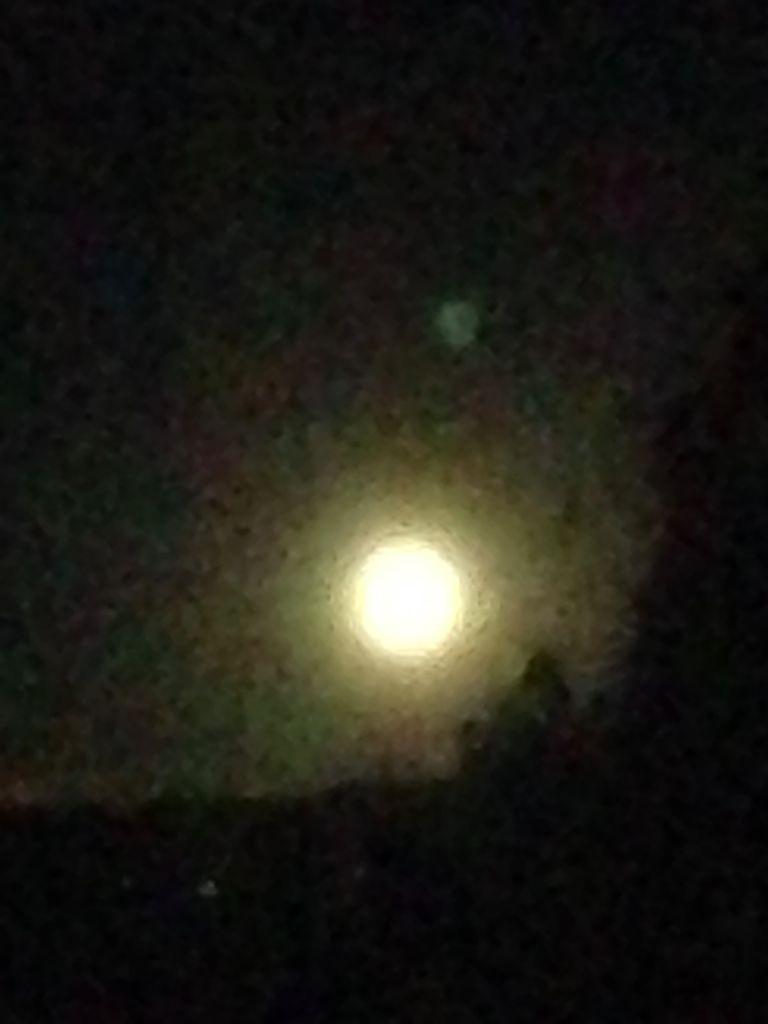 La luna flamenca